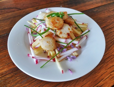 Seared scallops and apple salad