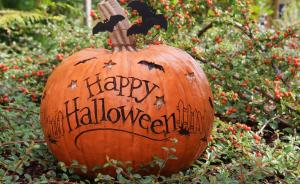 Let your creative juices flow... 5 FUN ideas for your garden this Halloween