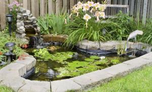 5 ways to keep your pond safe from children