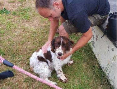 Eternally grateful: Scampi the spaniel reunited with owners five years after he was stolen
