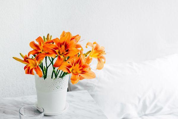 Keeping fresh flowers in your home can reduce pain and anxiety
