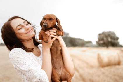 Have a heart: Study proves dogs are good for your cardiovascular health