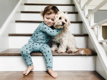 A dog is a lifetime commitment: how to convince your kids that they dont NEED a puppy right now