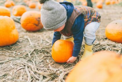 Great ideas to make the most of Halloween this year