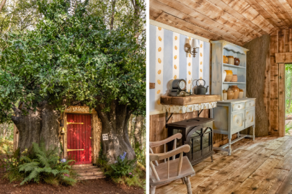 You can now stay in Winnie the Pooh's home in the real Hundred Acre Wood on Airbnb