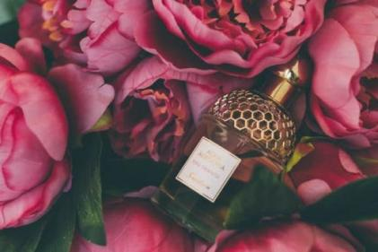 Fragrant fruit and sensual spices: Our top luxe autumn perfume selections